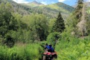 Northern rainforest ATV tour